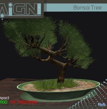 Bonsai Tree 1L Yin Yang Event Promo Gift by RAIGN - Teleport Hub - teleporthub.com