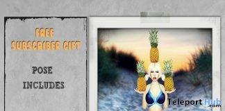 Pineapple Babe July 2017 Subscriber Gift by Joplino - Teleport Hub - teleporthub.com