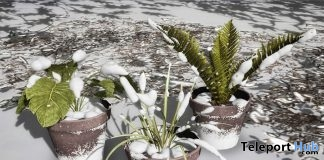 Snowy Plant With Pot October 2017 Group Gift by Domus Aurea Design - Teleport Hub - teleporthub.com