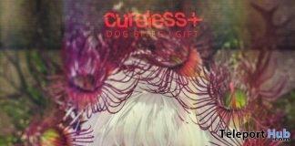 Dog Bites Chest Tattoo Omega Applier January 2018 Group Gift by CURELESS [+] - Teleport Hub - teleporthub.com