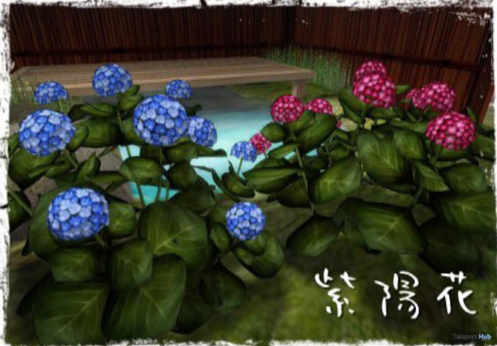 Hydrangea Purple & Blue Gift by mokka - Teleport Hub - teleporthub.com