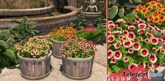 Lucille Gardezia Flowers May 2018 Group Gift by Ariskea - Teleport Hub - teleporthub.com