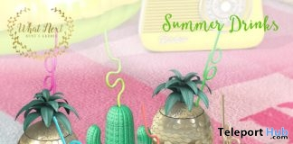 Summer Drinks SL15B Gift by {what next} - Teleport Hub - teleporthub.com