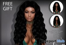 Lioness Hair October 2018 Gift by Sintiklia - Teleport Hub - teleporthub.com