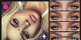 Delicate Eyelashes November 2018 Group Gift by POUT! - Teleport Hub - teleporthub.com