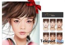 Shape & Skin | Teleport Hub - Second Life Freebies