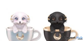 Teacup Poodles Moon Milk December 2018 Group Gift by Sweet Thing - Teleport Hub - teleporthub.com