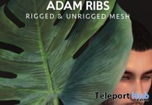 Adam Ribs Leaf with Animation December 2018 Gift by CHEERNO - Teleport Hub - teleporthub.com