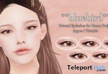 Natural Eyelashes For Genius Bento Head 90L Promo by bluebird - Teleport Hub - teleporthub.com