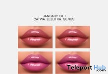 Lipstick Pack For Mesh Heads January 2019 Group Gift by Lisa Walker Makeup- Teleport Hub - teleporthub.com