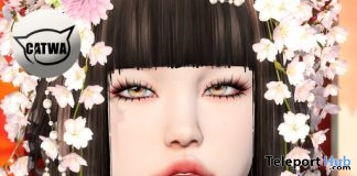 Voluminous Eyelashes For Catwa Head January 2019 Group Gift by bluebird - Teleport Hub - teleporthub.com