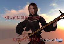 Shamisen Musical Instrument Gift by Miyabi-Ya- Teleport Hub - teleporthub.com