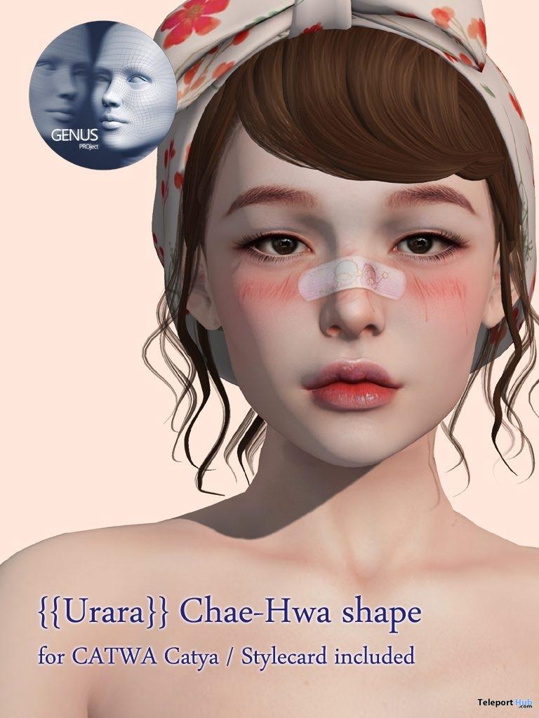 Chae-Hwa Shape For GENUS Babyface Head 75L Promo by Urara- Teleport Hub - teleporthub.com