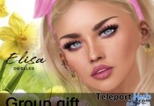 Elisa Skin Applier Pack For GENUS Head April 2019 Group Gift by DS'ELLES - Teleport Hub - teleporthub.com