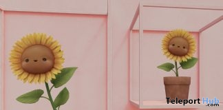Animated Sunflower & Planter Store Opening April 2019 Group Gift by MishMish- Teleport Hub - teleporthub.com