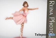 Single Pose SG0042 With Scene May 2019 Group Gift by Reina Photography- Teleport Hub - teleporthub.com