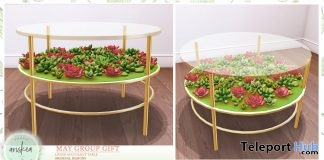 Living Succulent Table May 2019 Group Gift by Ariskea - Teleport Hub - teleporthub.com