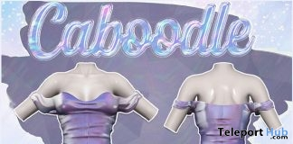 Fae Dress Holo Purple 1L Promo Gift by Caboodle - Teleport Hub - teleporthub.com