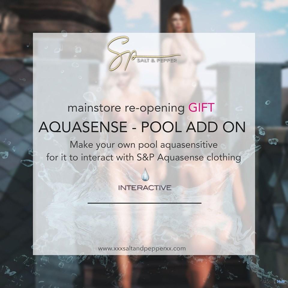 Aquasense Pool Add On Kit May 2019 Gift by Salt & Pepper- Teleport Hub - teleporthub.com