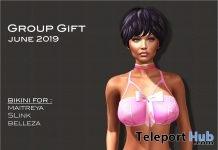 Pink Undies June 2019 Group Gift by Selene Creations - Teleport Hub - teleporthub.com