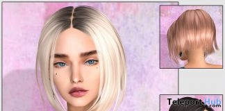 Kat Hair Fatpack June 2019 Group Gift by KoKoLoReS - Teleport Hub - teleporthub.com