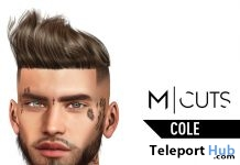 Cole Hair Fatpack July 2019 Gift by Modulus - Teleport Hub - teleporthub.com