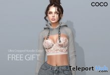 Ultra Cropped Hoodie Grey Gift by COCO Designs - Teleport Hub - teleporthub.com
