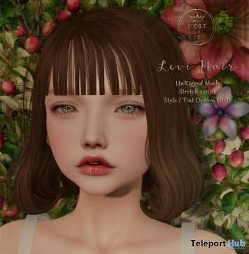 Levi Hair Fatpack August 2019 Group Gift by C'est la vie! - Teleport Hub - teleporthub.com