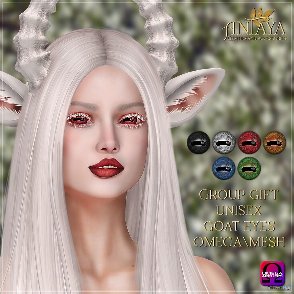 Goat Mesh Eyes & Omega Applier September 2019 Group Gift by ANTAYA- Teleport Hub - teleporthub.com