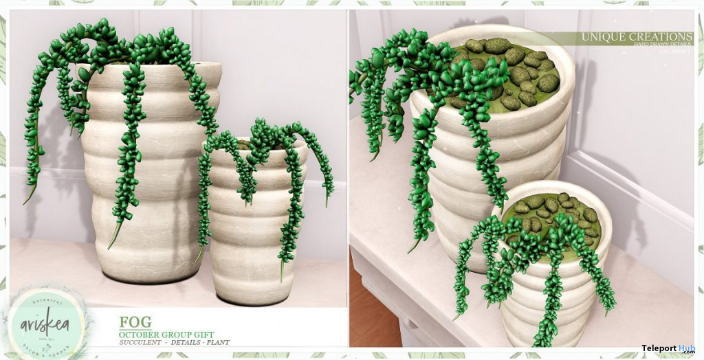 Fog Succulent Plant October 2019 Group Gift by Ariskea - Teleport Hub - teleporthub.com