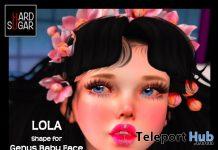 Lola Shape for Genus Baby Face October 2019 Group Gift by HARD SUGAR- Teleport Hub - teleporthub.com