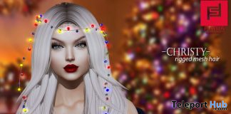 Christy Hair January 2020 Group Gift by FABIA