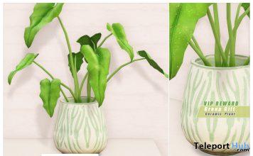Ceramic Green Plant February 2020 Group Gift by Ariskea - Teleport Hub - teleporthub.com
