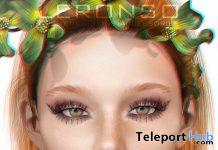 Lola Skin For Genus Mesh Head March 2020 Group Gift by LERONSO skins - Teleport Hub - teleporthub.com