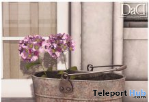 Hydrangea In Pot April 2020 Group Gift by Domus Aurea Design - Teleport Hub - teleporthub.com