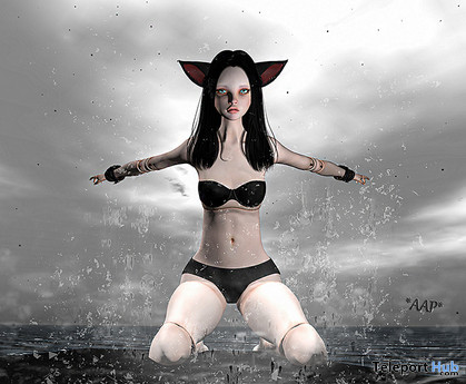 Free To Fly Single Pose April 2020 Group Gift by *AAP* - Teleport Hub - teleporthub.com