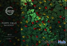 Poppy Field Backdrop May 2020 Gift by Synnergy - Teleport Hub - teleporthub.com