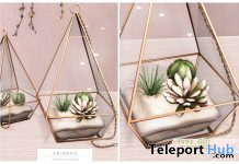 Terrarium Cactus Decor June 2020 Group Gift by Ariskea - Teleport Hub - teleporthub.com
