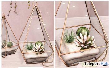 Terrarium Cactus Decor June 2020 Group Gift by Ariskea - Teleport Hub - teleporthub.com