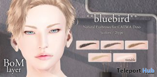 Natural Eyebrows For CATWA Dino BoM Only May 2020 Gift by bluebird - Teleport Hub - teleporthub.com