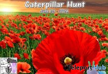 Caterpillar Hunt 2020 - Teleport Hub - teleporthub.com