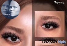 Glam Lashes For Genus Mesh Head June 2020 Group Gift by Mignonne - Teleport Hub - teleporthub.com