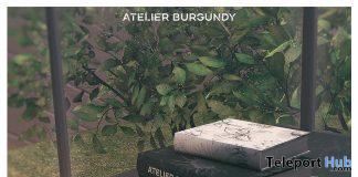 The Atelier Books June 2020 Gift by Atelier Burgundy - Teleport Hub - teleporthub.com