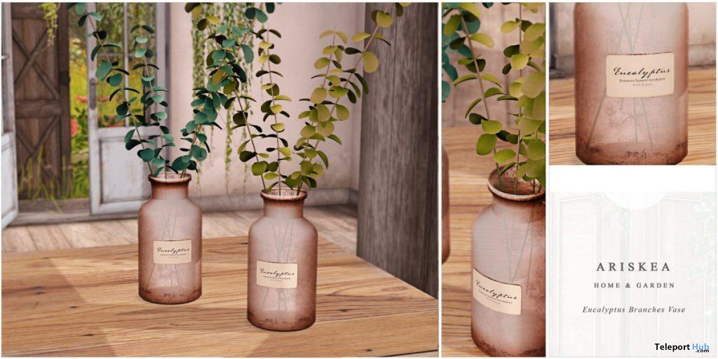 Eucalyptus Branches Vase September 2020 Group Gift by Ariskea - Teleport Hub - teleporthub.com