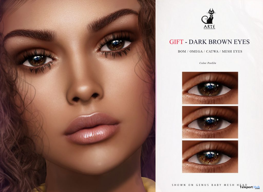 Dark Brown Eyes September 2020 Group Gift by ARTE - Teleport Hub - teleporthub.com