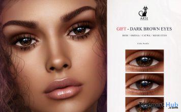 Dark Brown Eyes September 2020 Group Gift by ARTE - Teleport Hub - teleporthub.com