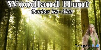 Woodland Hunt 2020 - Teleport Hub - teleporthub.com