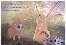 Ickle Sheepee Animesh Companion 10th Anniversary October 2020 Group Gift by Jinx - Teleport Hub - teleporthub.com