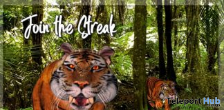 Firestorm Tiger Firestorm 10th Anniversary Event October 2020 Gift by Wild Kajaera - Teleport Hub - teleporthub.com