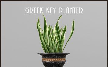 Greek Key Planter with Snake Plant November 2020 Gift by Demimonde - Teleport Hub - teleporthub.com